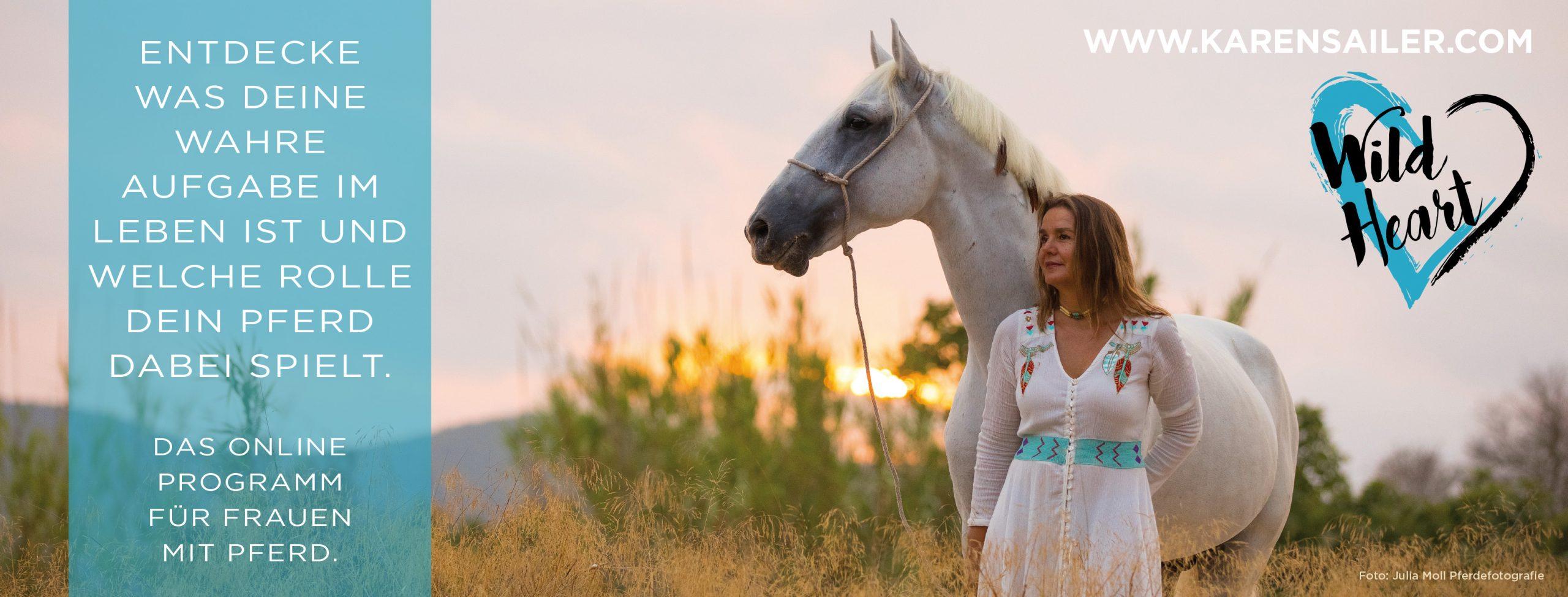 Wild Heart Karen Sailer